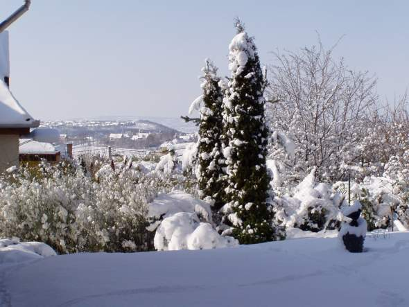 téli kilátás